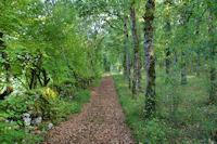 Le chemin a La Peyre Levade