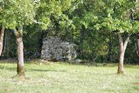 Une cazelle au Cazalou