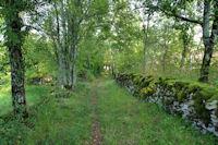 Le sentier vers Camps de Sabrier