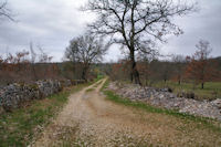 Le chemin apres Puy de Capy