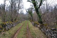 Le chemin vers Pech Polat