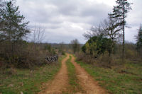 Le chemin à Lou Clau des Bassives