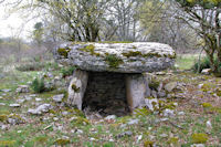 Le dolmen de Lou Bosc
