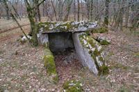 Un dolmen à la Combe du Cornier