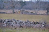 Une cariotte mur au Camps de l'Igue