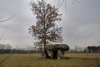 Un dolmen vers Ferrières Bas
