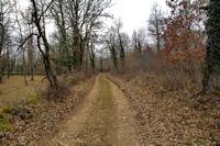 Le chemin vers Bousigue
