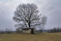 Un dolmen vers Mas de Coti