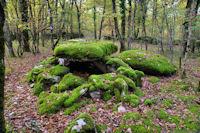 Le Dolmen des Vayssieres