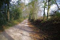 Le chemin peu avant Pierron