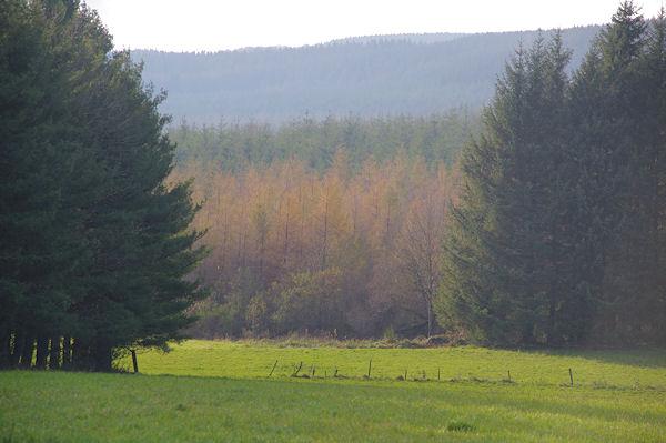 La Plaine de Roquefort