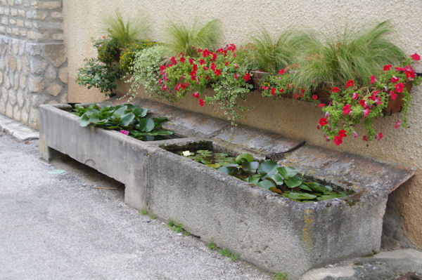 Abreuvoir fleuri à St Amnacet