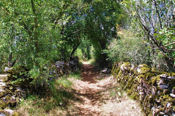 Le GR46 vers Les Boulbènes