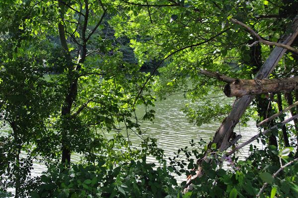 L_Aveyron