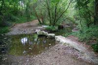 Le ruisseau de Sourette