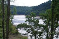 Le Lac des Cammazes depuis la foret de Crabemorte
