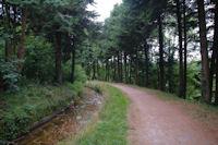 La Rigole de la Montagne Noire vers En Bosc