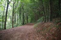 Le chemin a la Combe d'Arnaud