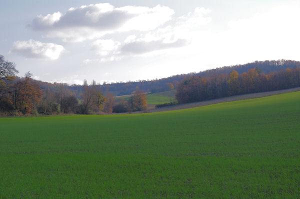 Le vallon du ruisseau de St André