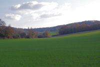 Le vallon du ruisseau de St Andre