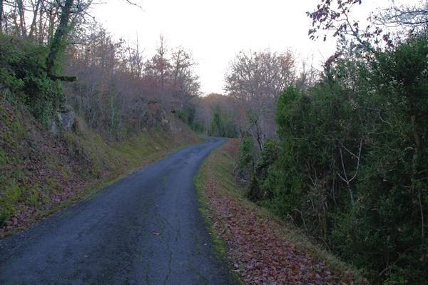 La route menant à la Vernière