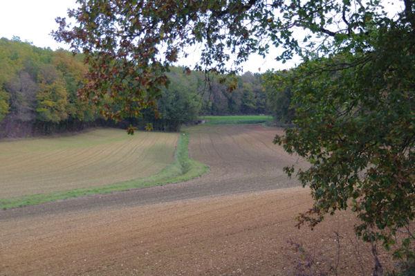 Labours d_automne dans la vallée du ruisseau de la Rauze