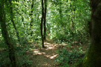 Le sentier de descente vers Massaguel