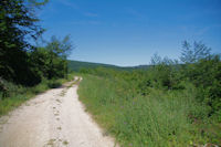 Le chemin vers Saigne de Peyreblanque