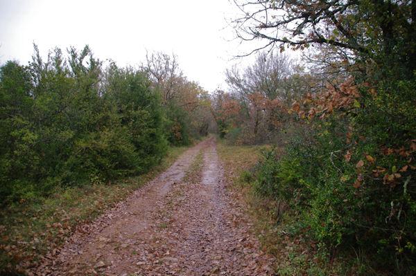 Le chemin à la Devèze de la Boulbène