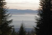 La plaine de Cstelnaudary et les Pyrenees depuis au dessus de Laujol