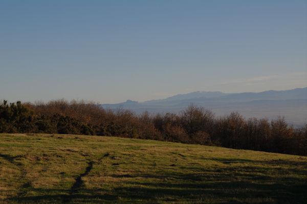 Au fond, le Pech de Bugarach et le Canigou depuis la crête du vallon de Poutou