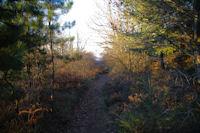Le chemin descendant vers le vallon du ruisseau de Poutou