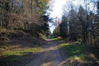 Le chemin au dessus de l'Hermitage