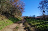 Le chemin au dessus du vallon du ruisseau de Montmaur