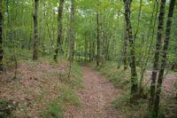 Le sentier pour rejoindre la vallee du Tescou