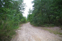 Le chemin apres Le Gourpat