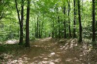 Le chemin vers le Rocher du Verdier