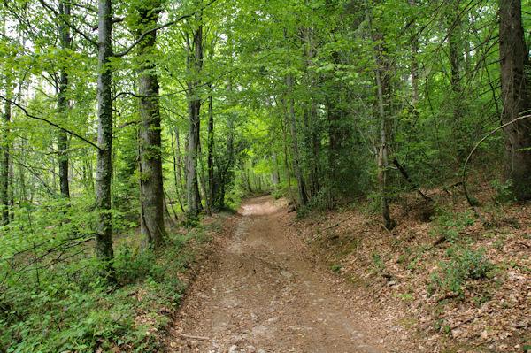 Le GR36 vers Le Merle