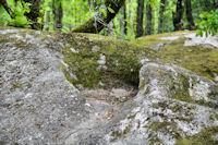 Une cocotte dans le granit