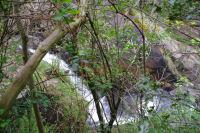 Cascade vers le gouffre de Malamort