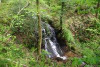 Une petite cascade au dessus du Gouffre de Malamort