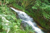 Les cascades du Mouscaillou