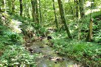 Le vallon boisé du Mouscaillou, en haut des cascades