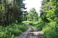 Le chemin vers Pioch del Souc