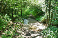 Le ruisseau de la Prune