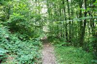 Le chemin en contre haut du ruisseau du Mouscaillou
