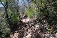 Le chemin montant au Pech de Coumo Davit