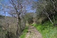 Le GR46 descendant dans le vallon de l'Audoulou