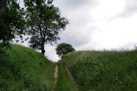 Le chemin apres Les Imbertaries