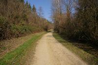 Dans la vallee de la Sauziere